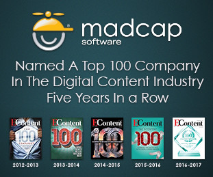 Top 100 Company in the Digital Content Industry